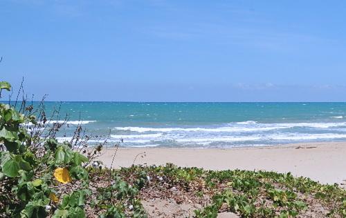 Pláž Playa Cabarete